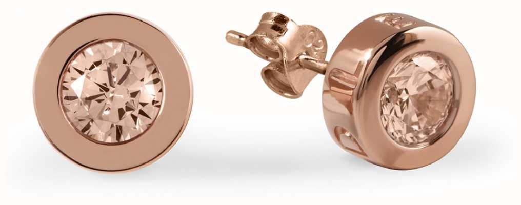Radley Jewellery Vintage Rose Stone Set Rose Gold Stud Earrings RYJ1030