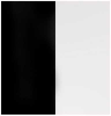 Les Georgettes 12mm Vinyl Insert | Black/White 703018584M4000